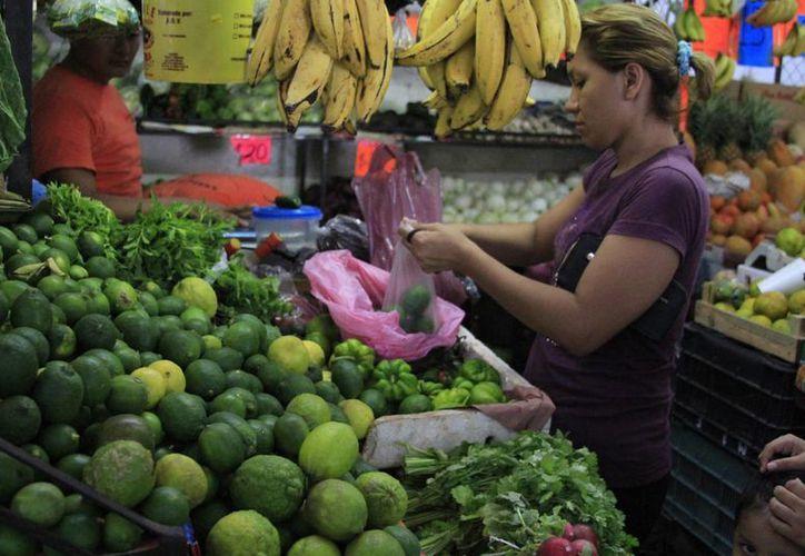 El limón persa ahora se encuentra entre los 15 y 20 pesos el kilo. (Ángel Castilla/SIPSE)