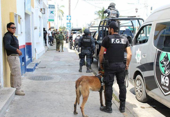 El operativo de Profeco con apoyo de fuerzas de seguridad inició en el centro del puerto de Progreso. (Gerardo Keb/Milenio Novedades)