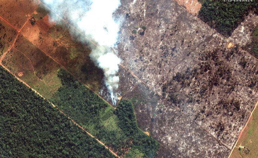 Esta imagen satelital del 15 de agosto de 2019 de Maxar Technologies muestra una vista de cerca de un incendio al suroeste de Porto Velho, Brasil. El Instituto Nacional de Investigación Espacial de Brasil, una agencia federal que monitorea la deforestación y los incendios forestales, dijo que el país ha visto un número récord de incendios forestales este año hasta el martes 20 de agosto. (Imagen de satélite © 2019 Maxar Technologies vía AP)