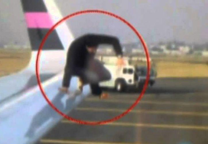 """""""Perturban la tranquilidad de los otros clientes y podrían poner en riesgo la seguridad aérea"""" (Cortesía)"""