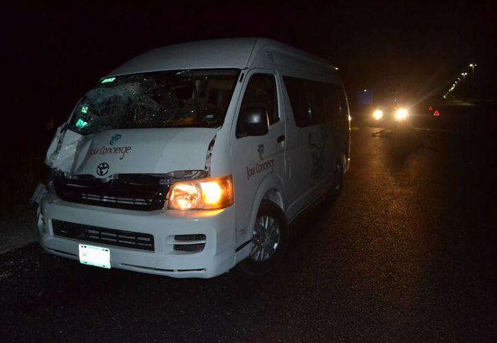 Dos caballos cruzaron desbocados la carretera, uno perdió la vida al impactarse contra una camioneta de traslado de turistas. (Redacción/SIPSE)