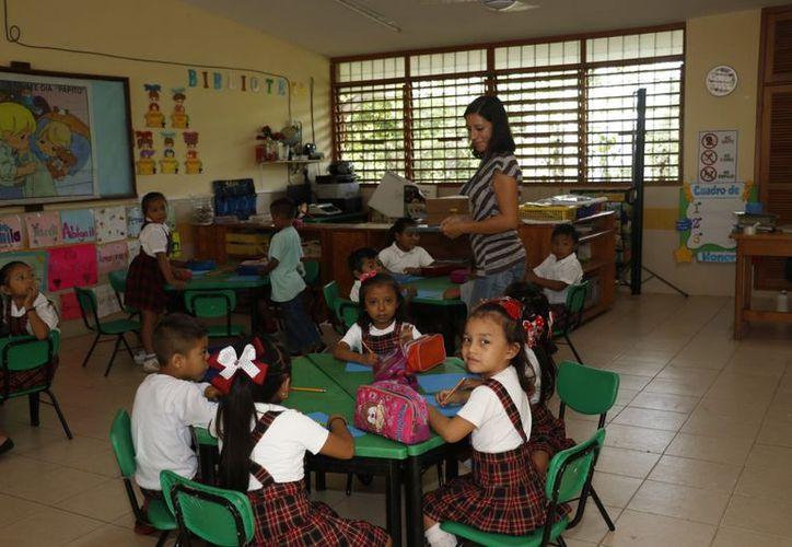 Dirigentes magisteriales aún no saben si se podrá modificar y, de ser así, piden entablar diálogo con la iniciativa privada y privilegiar la educación de los alumnos´. (Novedades Yucatán)