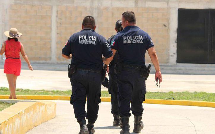Mencionan que ningún policía municipal cursó tal licenciatura. (Octavio Martínez/SIPSE)