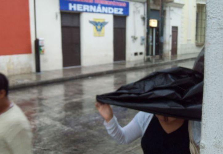 """Los """"naylons"""" de emergencia sirvieron ayer a algunos meridanos que fueron sorprendidos por la lluvia mañanera. (SIPSE.com)"""