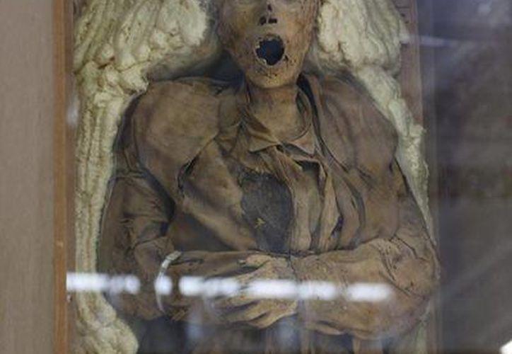 La momia fue trasladada en avión, en una caja de madera e inmovilizada en capullos de espuma de polietileno. (Redacción/SIPSE)