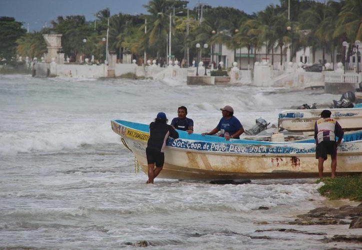 Cada año los pescadores de Cozumel buscan captar unas 25 toneladas de langosta. (Gustavo Villegas/SIPSE)