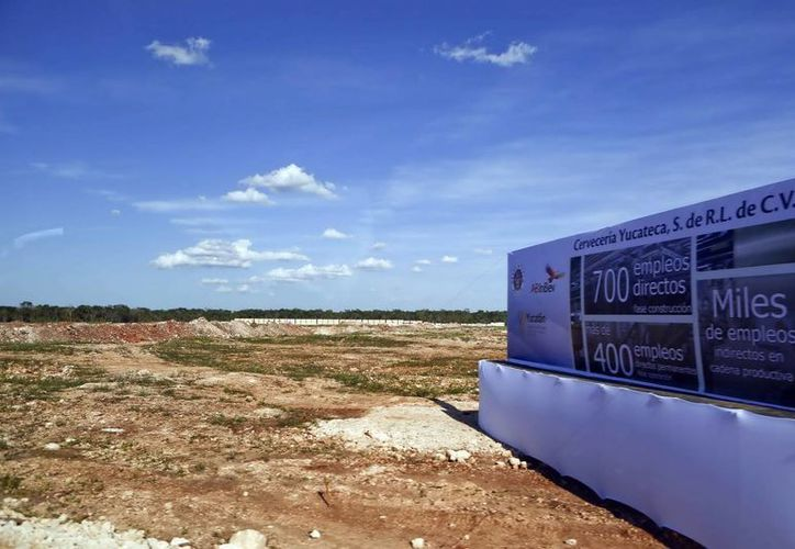 Resaltan que la instalación de la cervecera generará empleos. Imagen del terreno en donde se construirá las instalaciones del  Grupo Modelo. (Milenio Novedades)