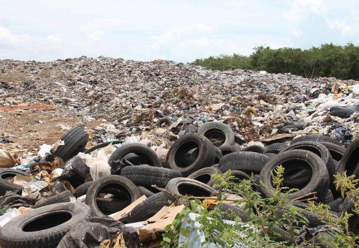 La empresa Gresusa, S.A de C.V será la encargada de continuar con la atención al basurero. (Gerardo Amaro/SIPSE)