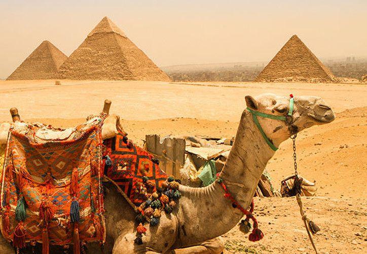 Realizarán análisis detallados para determinar la antigüedad exacta de esos monumentos. (Contexto/RT)
