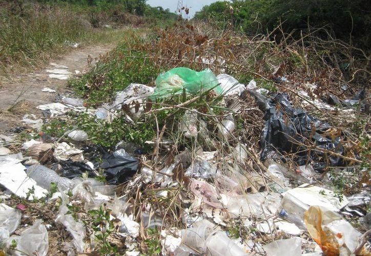 Los predios cercanos a la Laguna de los Siete  Colores son usados como basureros clandestinos. (Javier Ortiz/SIPSE)