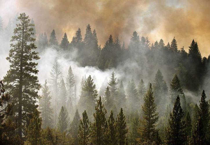 A día de hoy, el incendio sigue activo y ha crecido hasta ser el cuarto más extenso en la historia del estado de California. (EFE)