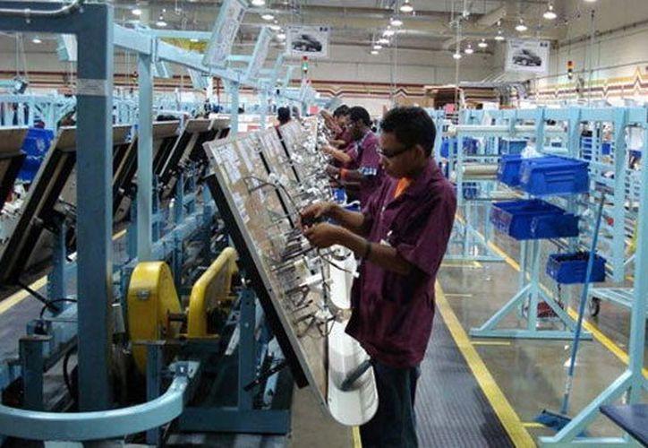 El sector exportador yucateco registró un incremento de dos mil 459 millones 392 mil pesos en cinco meses. (Foto: Milenio Novedades)