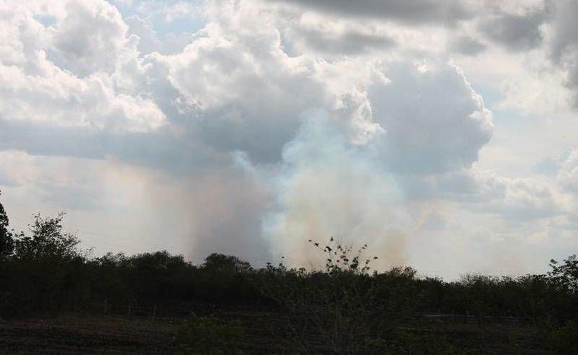 El dios Chaac permitió tener bajo control otros diez incendios. (Edgardo Rodríguez/SIPSE)