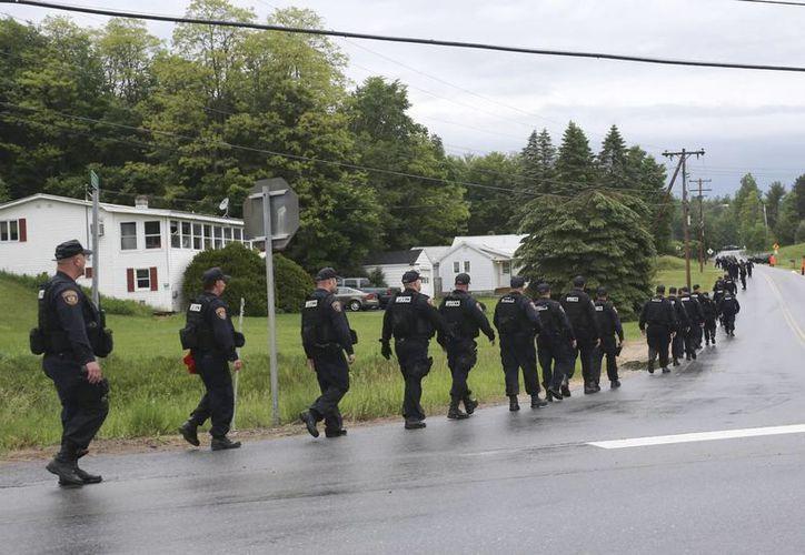 Oficiales caminan a lo largo de una carretera, cerca de Danemora, a un costado de un bosque, en el marco de la búsqueda de dos asesinos que escaparon de la prisión de máxima seguridad en Clinton, en Nueva York. (Foto: AP)