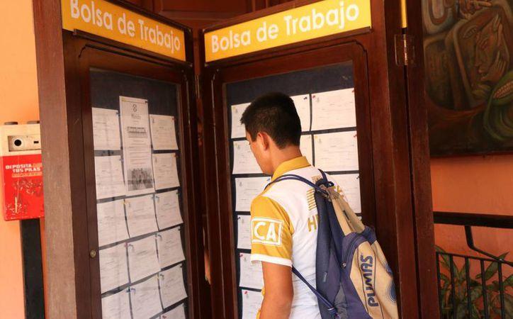 Prevé la STyPS aumento de salarios en trabajos eventuales por temporada de fin de año en Yucatán. (José Acosta/SIPSE)