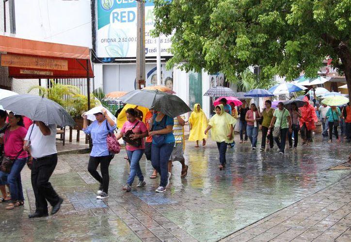 Los maestros soportan frío, calor y lluvia en la lucha magisterial. (Tomás Álvarez/SIPSE)