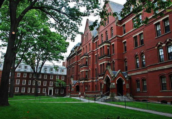Harvard, la más ilustre universidad de Estados Unidos, tiene en la mira a sus clubes solo para hombres.