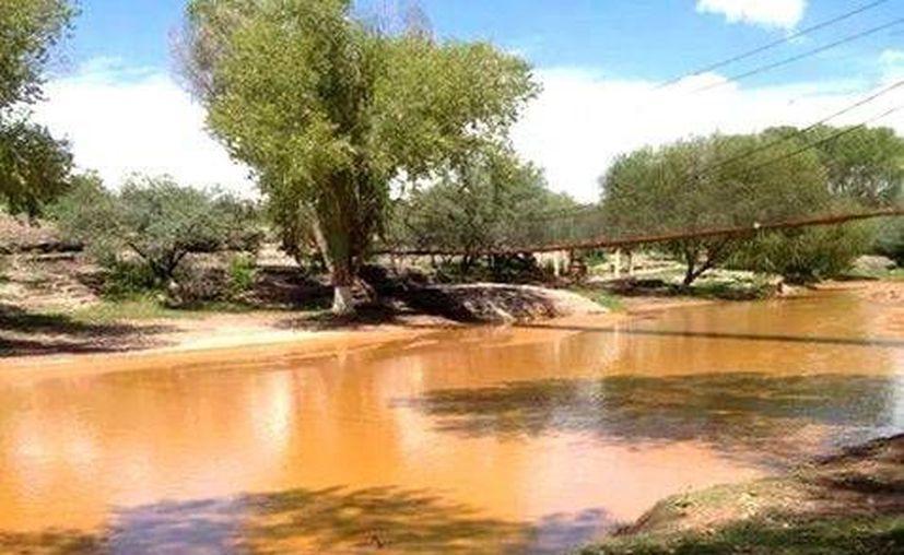 El derrame del río Sonora, de 40 mil metros cúbicos de ácido sulfúrico, afectaron al menor a 11 municipios. (Cortesía Profepa)