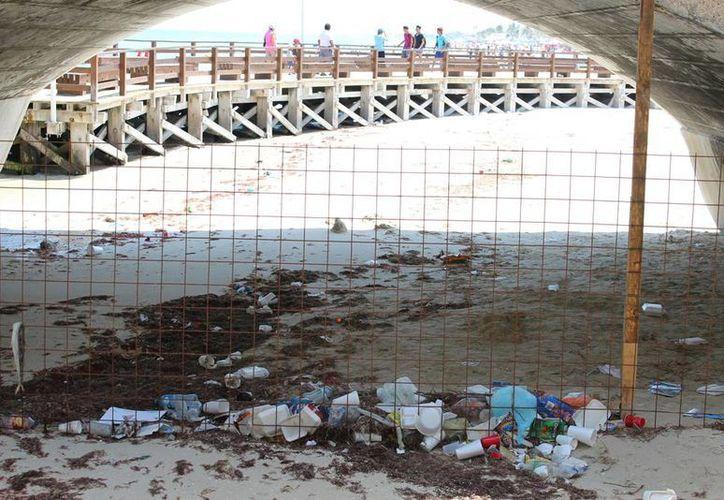 El problema de la recolección de basura en Progreso no sólo está en servicio domiciliario, sino también en las calles y en la playa. (Milenio Novedades)