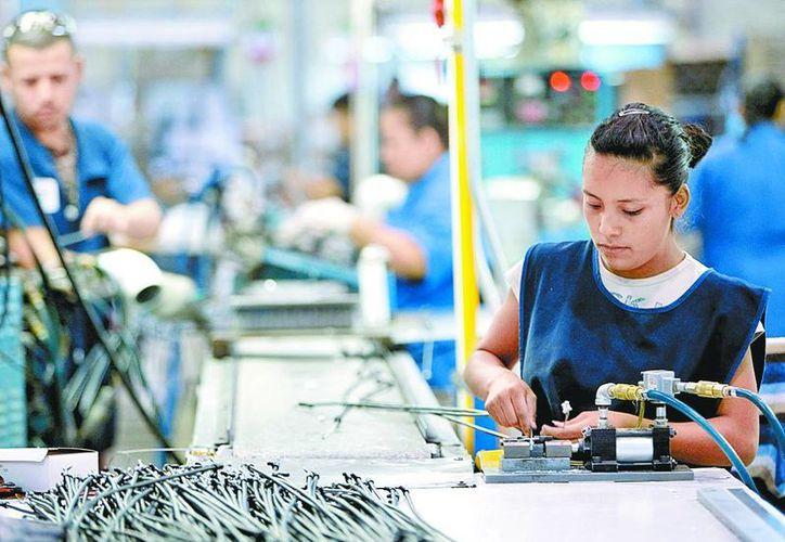 Alertas de gas, problema recurrente para el sector productivo. (Milenio)