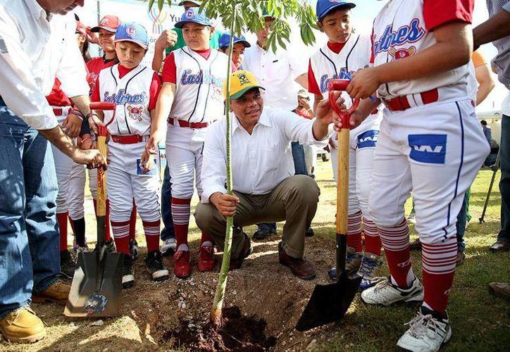 El Gobernador encabezó la reforestación la Unidad Deportiva de la Liga Infantil y Juvenil de Béisbol Yucatán donde se sembraron 141 árboles. (Cortesía)