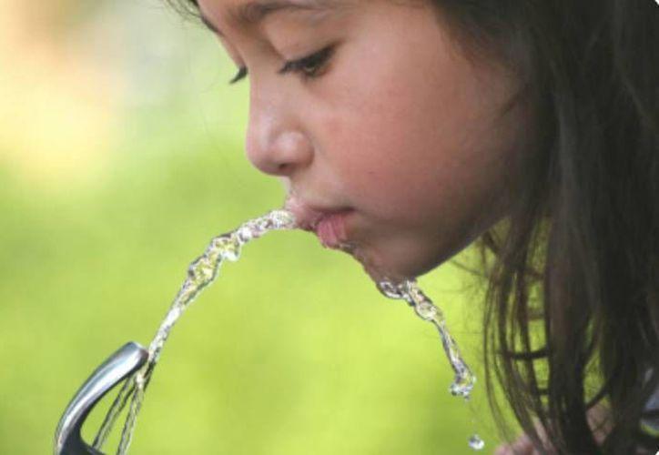 Con el proyecto se busca reducir el número de obesidad infantil en las escuelas de Quintana Roo. (Contexto/SIPSE)