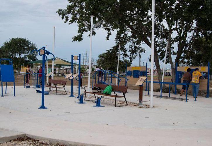 Dentro de pocas semanas se inaugurarán gimnasios para adultos mayores en el Paseo Verde. (Milenio Novedades)