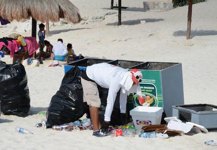 El proyecto inició en 2010 con alrededor de cinco mil voluntarios. (Victoria González/SIPSE)