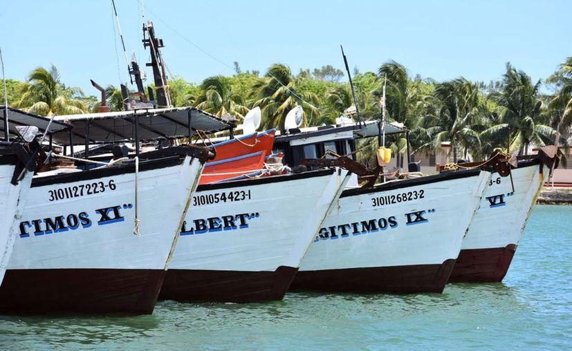 Dan mantenimiento y limpieza a las embarcaciones en Progreso. (Gerardo Keb/Novedades Yucatán)