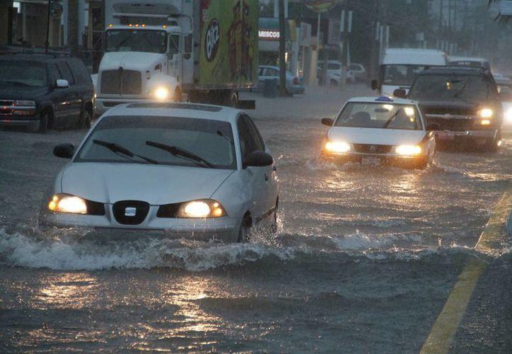 Durante la tempestad las aseguradoras registraron muchas actividad. (Israel Leal/SIPSE)