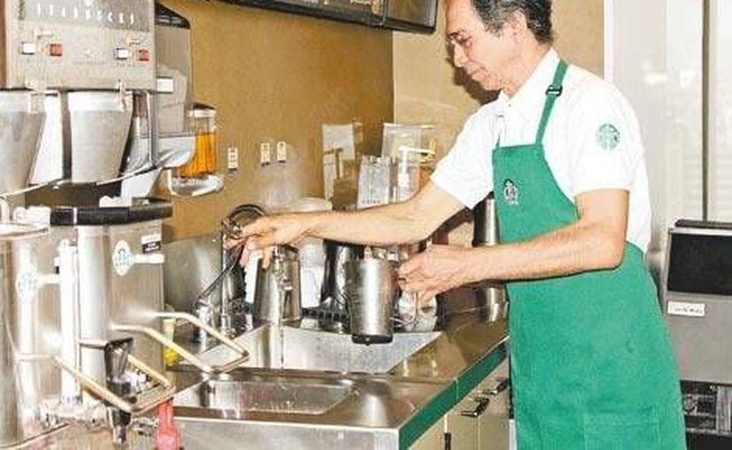 El Inapam le consigue trabajo en Starbucks a los adultos mayores para ser barista en cualquiera de las 388 sucursales del país. (Milenio)