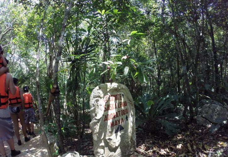 Los miembros de comités de cuenca en la península de Yucatán pretenden que se creen una NOM para proteger a los cenotes. (Adrián Barreto/SIPSE)