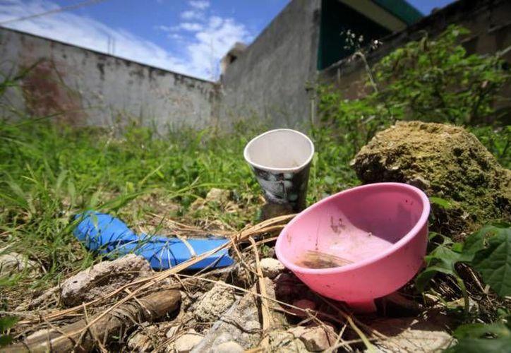 Al limpiar los predios se eliminan focos de infección, tanto por la proliferación de moscos o por ser usados como tiraderos clandestinos. (Harold Alcocer/SIPSE)