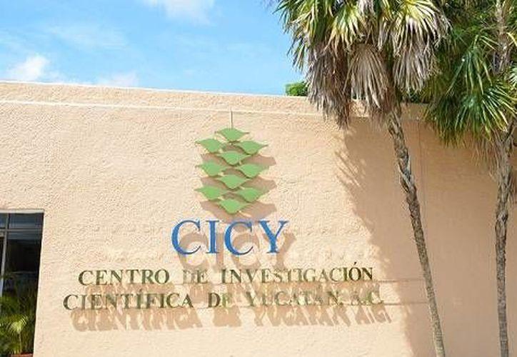 El Centro de Investigación Científica de Yucatán (CICY) contará con un banco de germoplasma de herbolaria maya. (SIPSE)