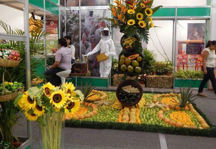 La Expocampo Yucatán, cuya novena edición inicia este viernes, muestra lo que produce Yucatán, propicia cadenas productivas, promueve negocios, difunde los programas de las dependencias del ramo, impulsa la transferencia de tecnología; presenta lo último en maquinaria, etc. (Foto cortesía del Gobierno)