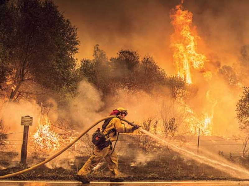 A Cal Fire firefighter waters down a back burn on Cloverdale Rd., near the town of Igo, Calif.