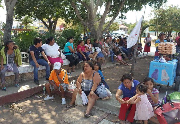 """Las 80 familias desalojadas del asentamiento irregular """"El Fortín"""" prevén levantar la segunda semana de junio el campamento. (Jesús Tijerina/SIPSE)"""