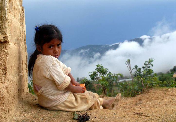 Miles de niños en México han quedado huérfanos por la sangrienta guerra de carteles del narcotráfico. (Imagen de referencia/Archivo/SIPSE)