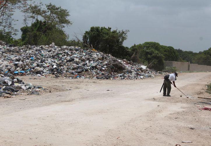 El Ayuntamiento de Othón P. Blanco dispone de tres predios para el nuevo basurero, pero aún no se define cuál será destinado para tal fin. (Joel Zamora/SIPSE)