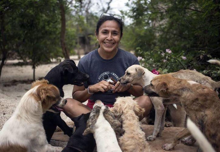 Silvia Cortés Castillo, presidenta de la Asociación Evolución Animal, dijo que los temas de maltrato a los animales causan indignación generalizada en la red. (Milenio Novedades)