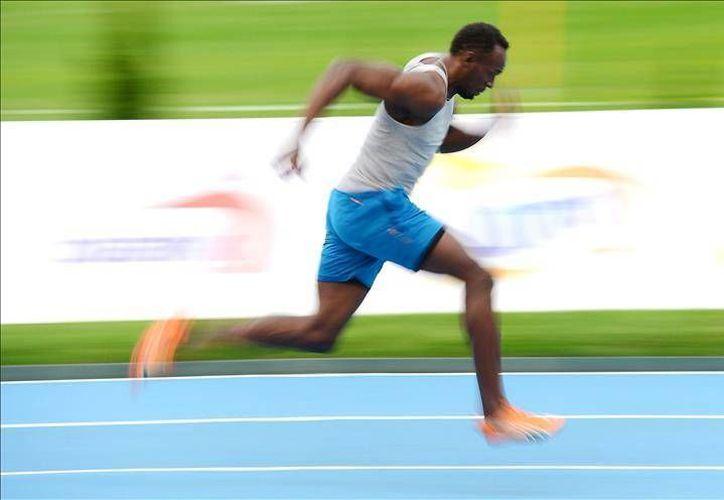 Aún no se ha especificado si Usain Bolt competirá en los 100 o en los 200 metros en Londres, pero lo más probable es que lo haga en el hectómetro. En la foto, durante una de sus diversas prácticas en la pista. (Efe)