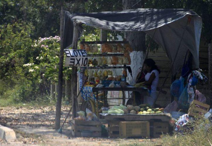 También se atenderá la situación de los vendedores ambulantes que adeudan la renovación. (Harold Alcocer/SIPSE)