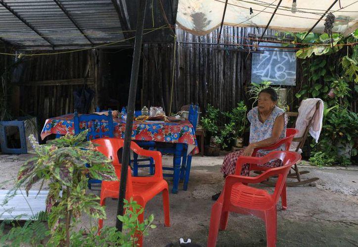Desde hace 15 días las familias se quedaron sin luz, lo que limita las compras de productos perecederos. (Adrián Barreto/SIPSE)