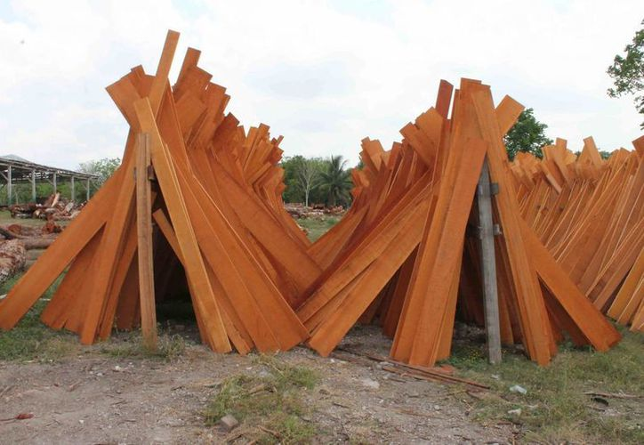 La madera de Quintana Roo busca venderse en otros mercados a parte del nacional. (Archivo/SIPSE)