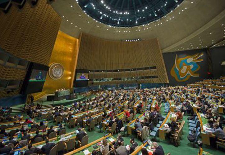 La ONU permite que su personal vaya y trabaje en circunstancias peligrosas. (www.un.org)