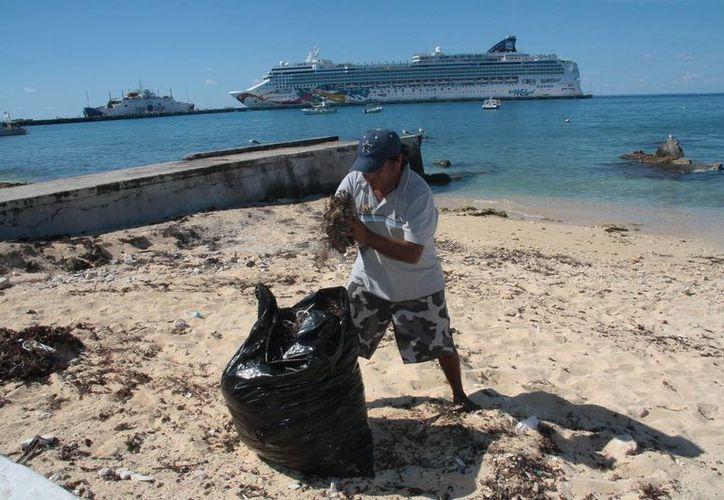 Un ciudadano realizó la limpieza de una zona de la playa. (Julián Miranda/SIPSE)