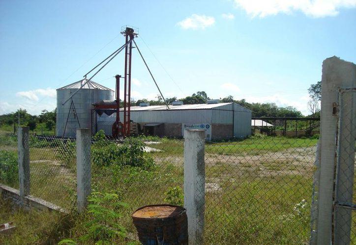 El almacén de semillas se ha convertido en una bodega de usos múltiples. (Carlos Yabur/SIPSE)