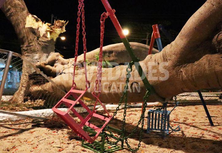 Los infantes estaban jugando en el parque cuando cayó el gran tronco. (Novedades Yucatán)