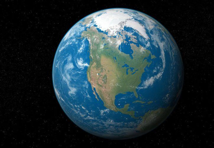 Científicas han logrado estimar cuánto pesan todos los seres vivos del planeta. (Internet)