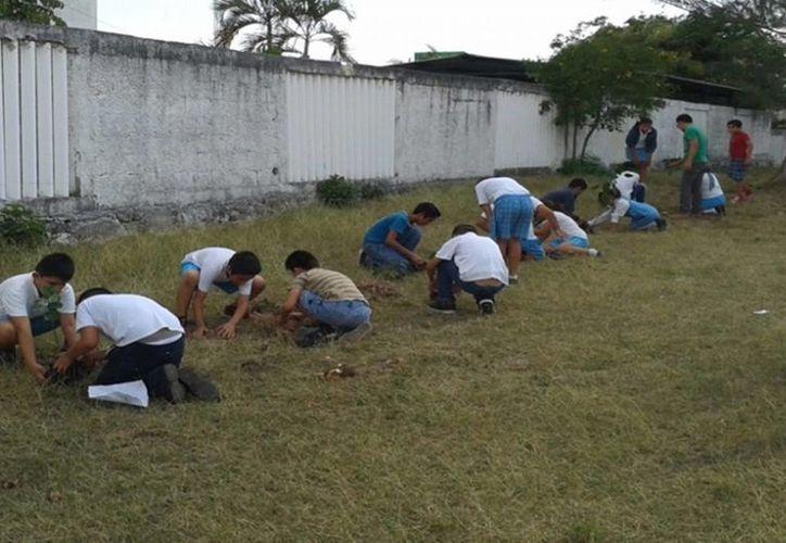 En Chetumal se impartió el taller Las 5R que fomenta las acciones para el cuidado del medio ambiente. (Harold Alcocer/SIPSE)